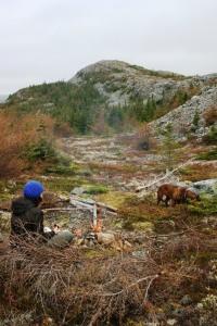 Newfoundland Fall